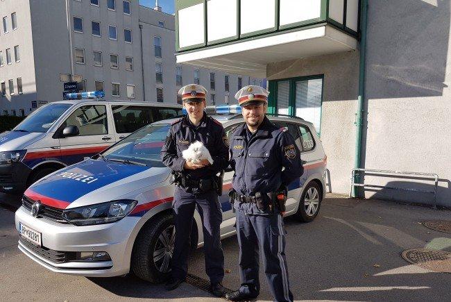 Das weiße Kaninchen und seine Retter von der Wiener Polizei