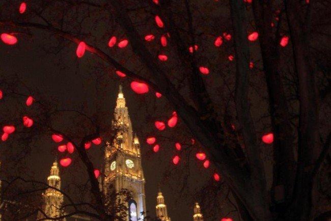 Ein Thema hält Wien derzeit in Atem wie kaum ein anderes: Der Herzerlbaum.