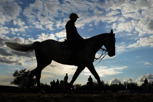 Die Polizei geht von einem tödlichen Sturz des Reiters aus