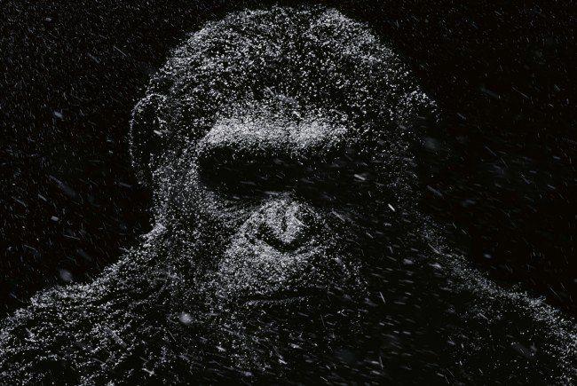 """Einer der kommenden Blockbuster des Jahres: """"Planet der Affen: Survival"""""""