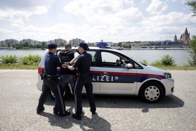 22 Personen wurden auf dem Donauinselplatz festgenommen.