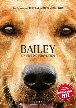 Bailey – Ein Freund fürs Leben – Trailer und Kritik zum Film