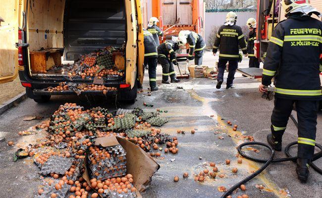 Tausende Eier wurden bei dem Brand zerstört.