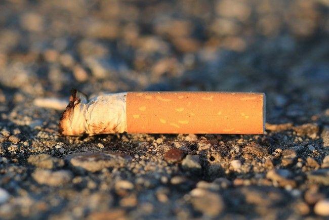 Wiener Müllsünder sollen tiefer in die Tasche greifen und höhere Strafen aufgebrummt bekommen.