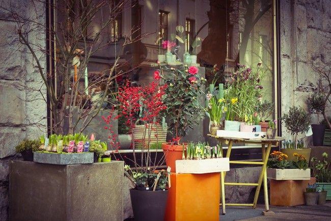 Friseure und Floristen wollen keine 1.500 brutto zahlen.