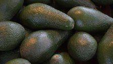 Bio-Avocados jetzt mit Laser-Logo bei REWE