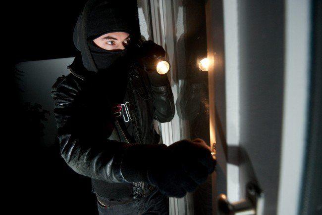 Weniger Wohnungseinbrüche und Pkw-Diebstähle verzeichnete die Wiener Polizei