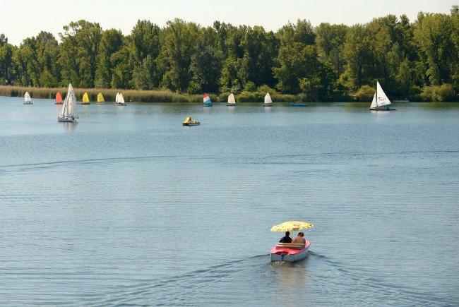Die Bootsverleihe auf Donau und Alter Donau in Wien.