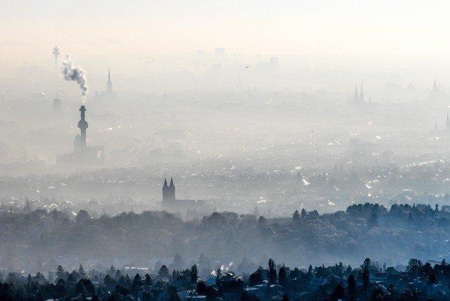 Blick vom Cobenzl über Wien.