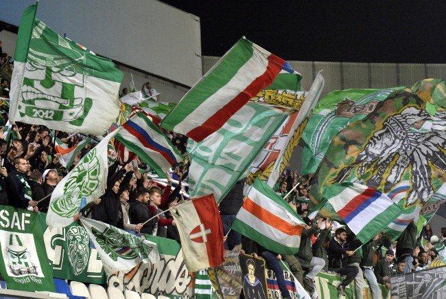 Eine Gruppe Rapid-Fans ist beim Amateur-Derby negativ aufgefallen.