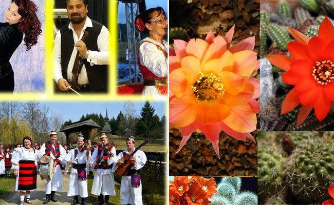 Am Wochenende lockt der Böhmische Prater mit zwei Veranstaltungen