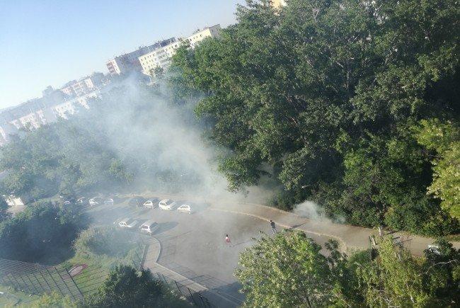 50 Quadratmeter an Gestrüpp gerieten am Freitag in Wien-Simmering in Brand.