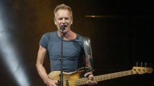 Sting kommt im Herbst live in die Stadthalle