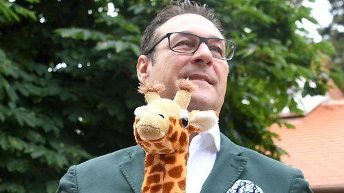 Strache & die Tiergarten-Giraffen
