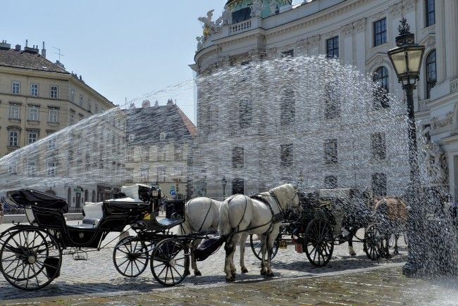 Die Wiener Innenstadt war am Donnerstag besonders heiß