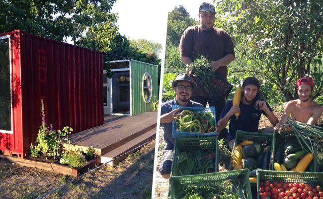 In der Lobau eröffnet ein neuer Stadt-Bauernladen.