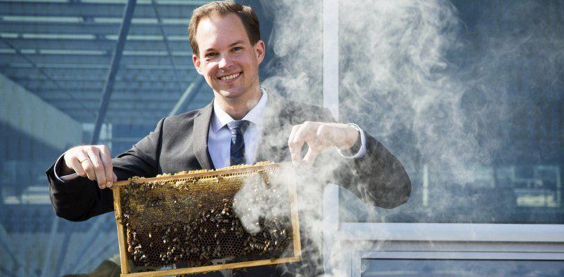 Bienenzucht am Dach des Donau Zentrums