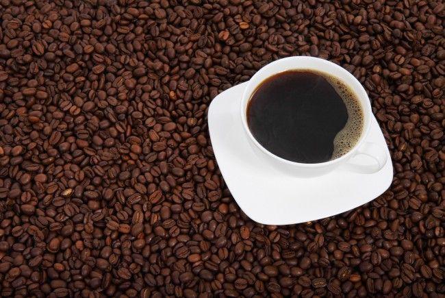 """Bei der Tagung """"Coffee & Lunch"""" drehte sich alles um die fair gehandelte Kaffeebohne."""