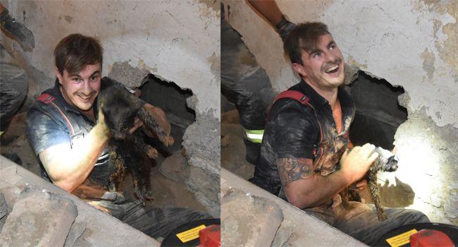 In Wien-Simmering rettete die Feuerwehr eine Katze aus der misslichen Lage.