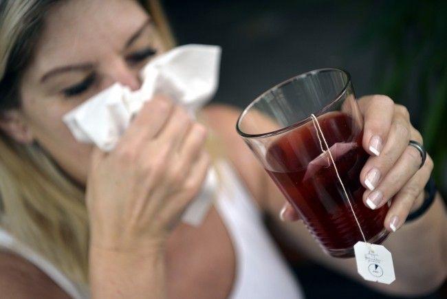 Der Wiener Grippemeldedienst ist wieder online