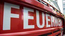 Landwirt bei Absturz mit Muli in Salzburg getötet