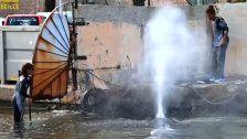 Marseille: Verirrter Walim Hafenbecken
