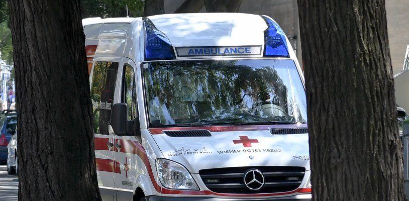 Wiener verletzt zwei Personen, demoliert Wohnung und begeht Diebstahl: Fahndung