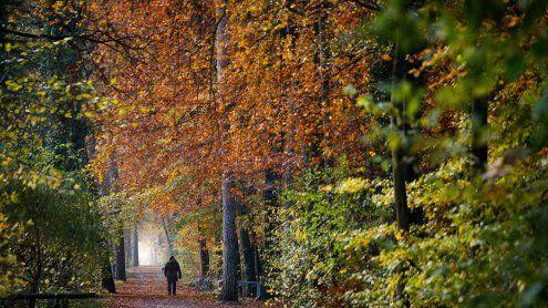 Immer stabileres Herbst-Wetter
