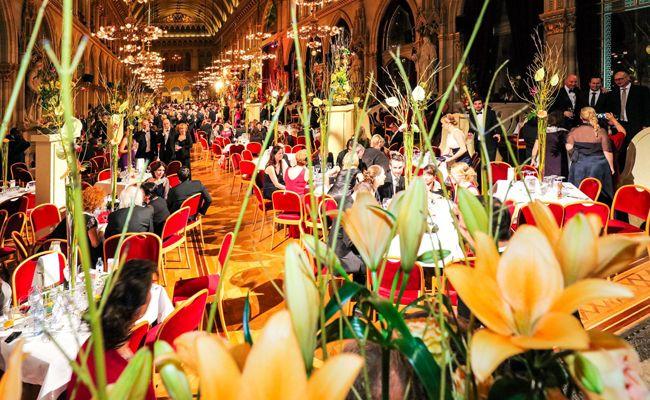 Der Wiener Blumenball findet bereits um 96. Mal statt.