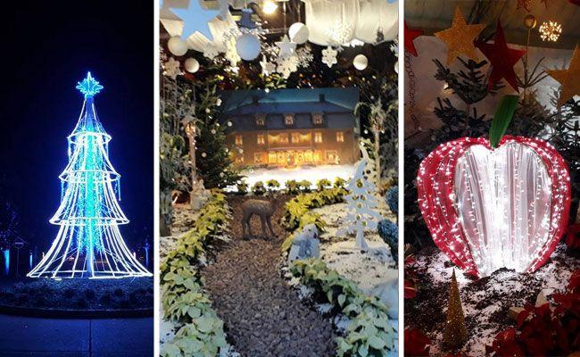 Die Weihnachtsausstellung gehört zu den Highlights in den Blumengärten Hirschstetten