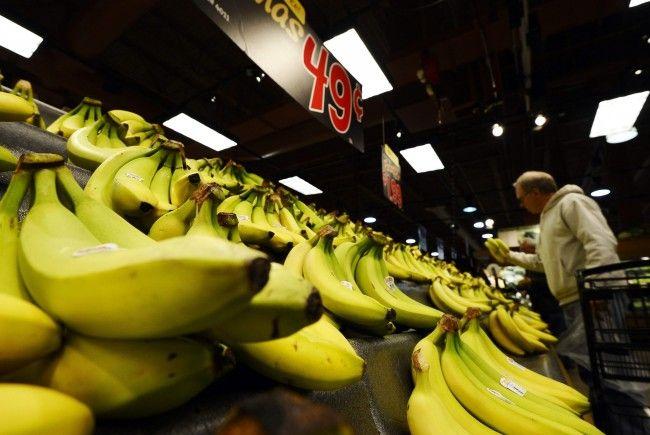 Das Kokain war zwischen Bananen versteckt.