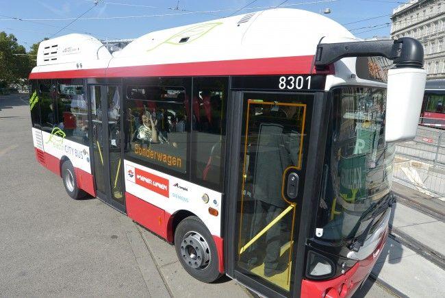 Die Wiener Linien werden neben den kleinen E-Bussen ab 2019 auch große Elektrobusse einsetzen.
