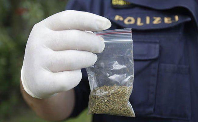 Insgesamt wurden 24 Baggies Cannabis sichergestellt.
