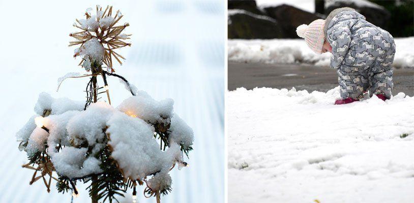 Weiße Weihnachten: Schneit es in Wien?