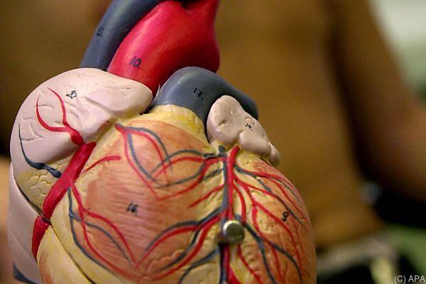 Behandlungsprogramm für Herzschwächepatienten fehlt