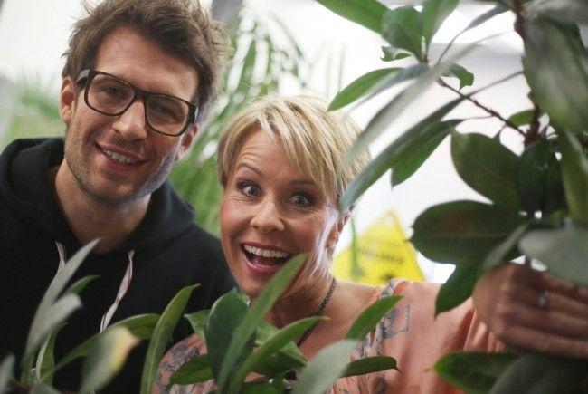 """Bald startet eine neue Staffel von """"Das Dschungelcamp""""."""
