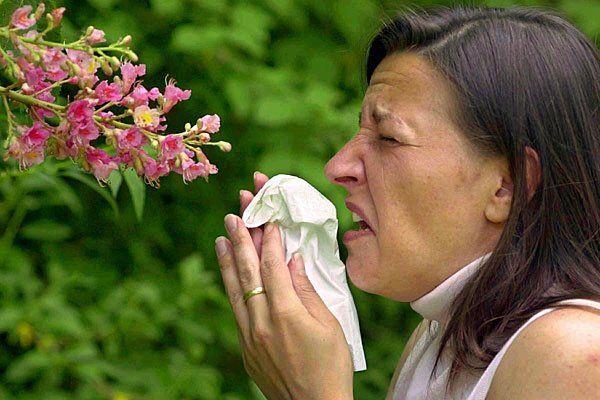 pollen_dpaDie Pollen fliegen wieder - und die Allergiker leiden