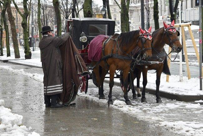 Auch im Flachland und in Wien wird es am Wochenende etwas winterlicher.