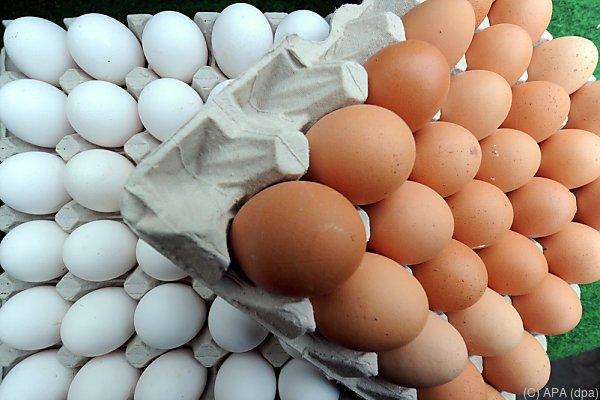 110 Eier-Lieferanten haben einen neuen Abnehmer