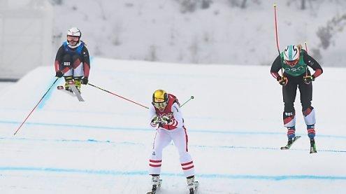 Ski Crosser auch bei Damen ohne Medaille - Gold geht an Serwa