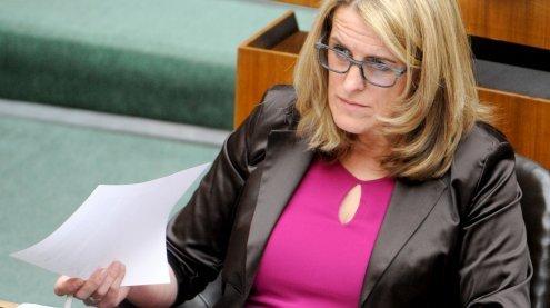 Außenministerium zog Kritik an Familienbeihilfe-Kürzung zurück