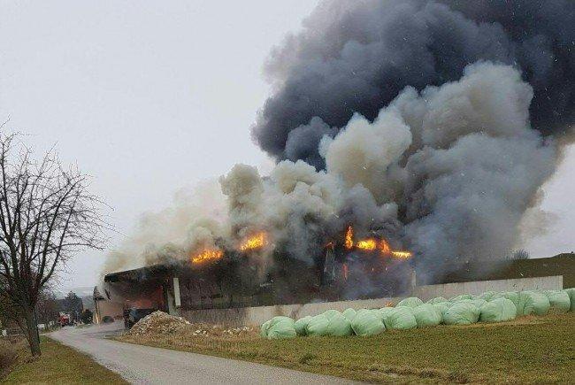 Ermittlungen der Polizei führten zur Brandursache
