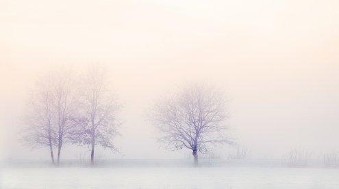 Kältewelle kommt: Wochenende bringt bis zu minus 22 Grad