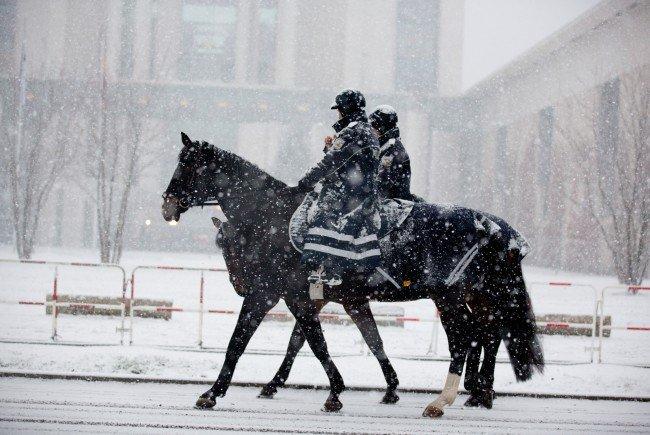 Die Pläne für eine berittene Polizei in Wien werden heftig kritisiert.