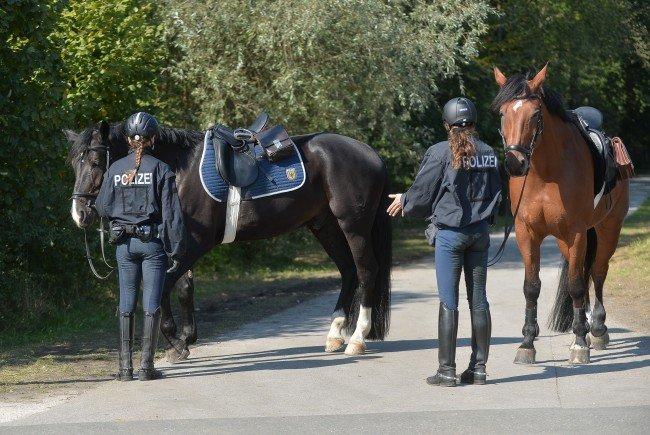 Auf Kickls Pläne zur Wiener Polizei-Pferdestaffel wird wenig begeistert reagiert.