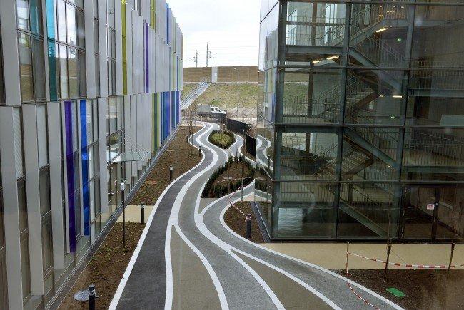 """Die Grüne wollen in Bezug auf den Bau des Krankenhaus Nord eine """"lückenlose Aufklärung""""."""