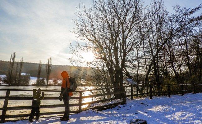 Nach der Winterruhe ist der Lainzer Tiergarten ab 3. Februar wieder komplett geöffnet.