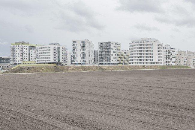 Die Wiener Seestadt bei ihren Anfängen. Von den geplanten 20.000 Bewohnern ist noch nicht viel zu spüren.