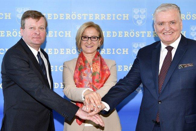 Die Regierungsparteien werden in Niederösterreich zusammenarbeiten.