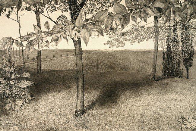 Werke von Klemens Brosch sind im Belvedere in Wien zu sehen.